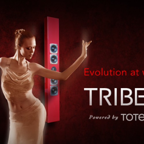 Totem's presence at the Salon Son & Images last March was a great sounding success.